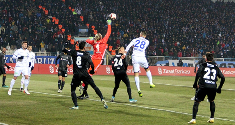 Kartal, Erzurum'da dondu