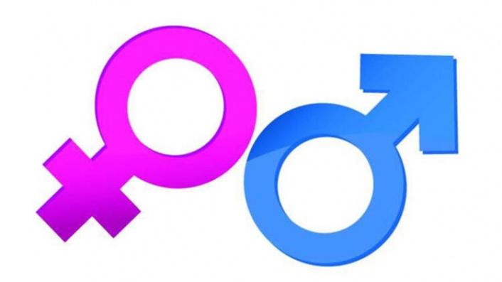Japon Takvimi ve Rus Cinsiyeti Cinsiyet Hesaplama
