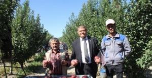 Isparta'da dalında 2,5 liraya kadar alınan elmanın büyük marketlerde 7-8 lira arasında satılmasına tepki
