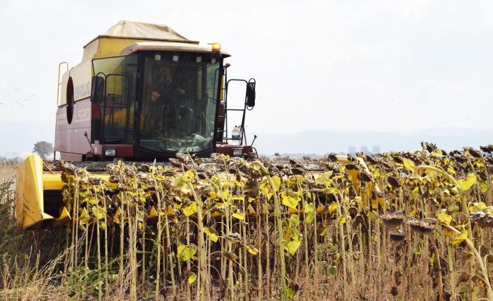 Sütaş ev sahipliğinde gerçekleşen Tarla Günü'nde tarımda organik ve organomineral gübrelerin, olumlu etkileri paylaşıldı