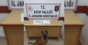 Hatay'da uyuşturucu operasyonuna 2 tutuklama