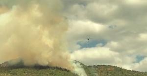 Manavgat'ta 6 hektar ormanlık alan yandı