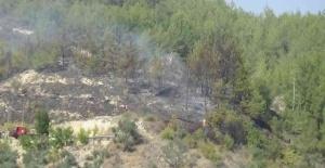Osmaniye'de çıkan orman yangını büyümeden söndürüldü
