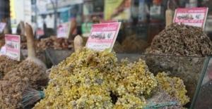 Sonbahar geldi, alerjik hastalıklar çoğaldı, bitki çaylarına rağbet arttı