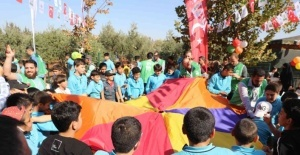 Suriyeli öğrenciler barış ve kardeşlik için zeytin topladı
