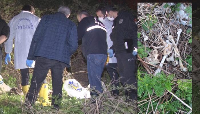 Avcılar'da çok sayıda kemik ve kafatası bulundu