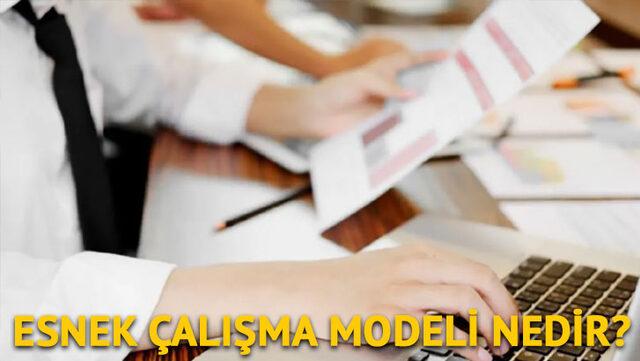 esnek çalışma modeli nedir