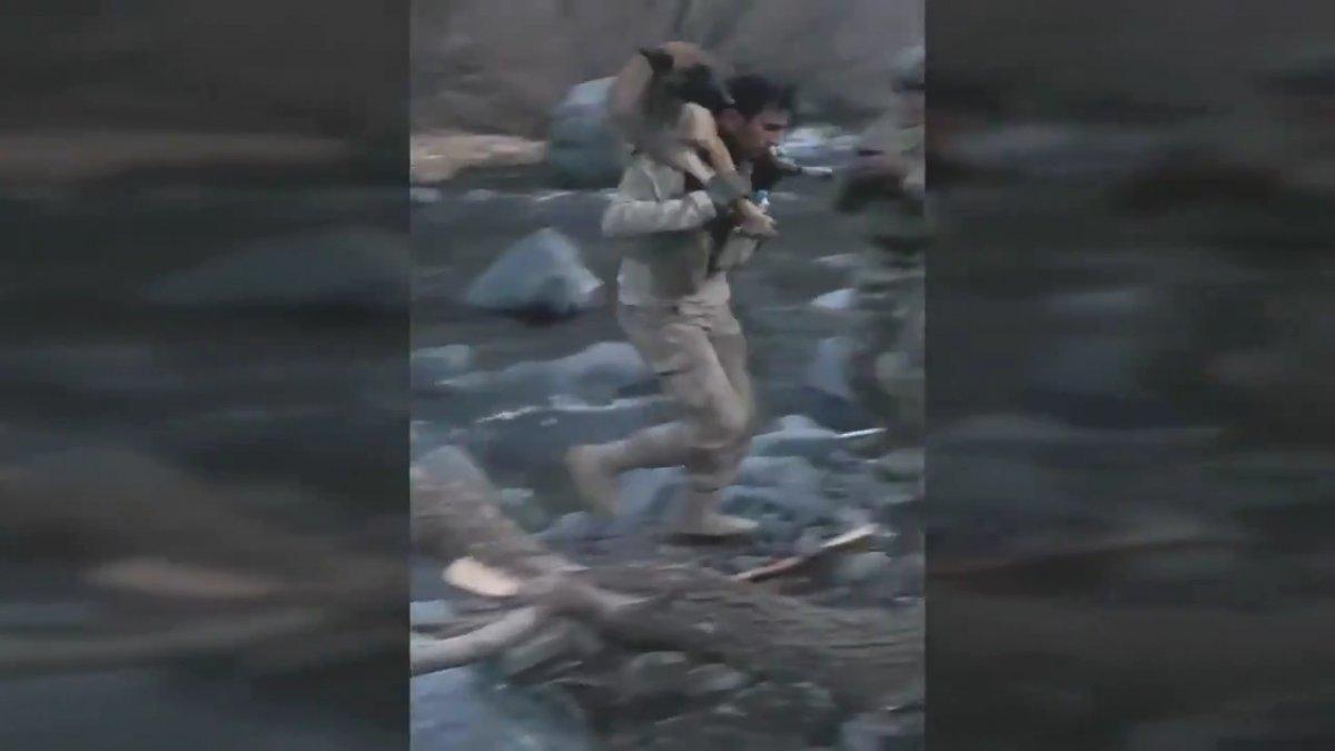 Hakurk taki Mehmetçik, köpeğin nehri geçmesine yardımcı oldu #3