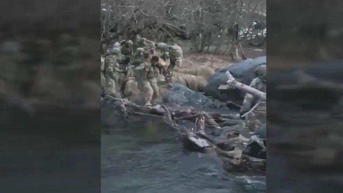 Hakurk'taki Mehmetçik, köpeğin nehri geçmesine yardımcı oldu