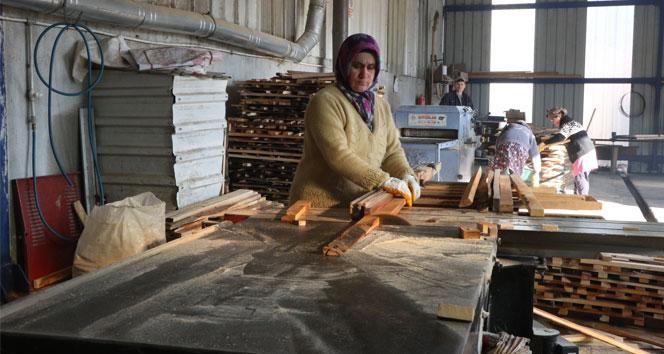 Kadınlar ekmeğini keresteden çıkarıyor