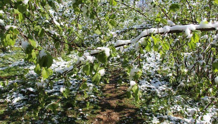 Meteorolojiden kuvvetli sağanak, kar ve don uyarısı
