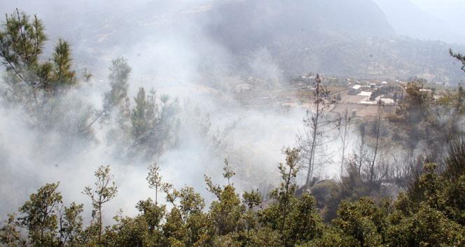 Seydikemer'de anız yangını ormana sıçradı