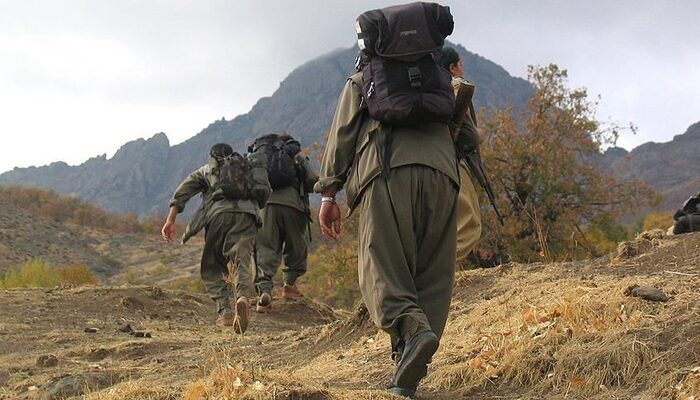 Terör örgütü PKK'dan kaçan bir terörist daha teslim oldu