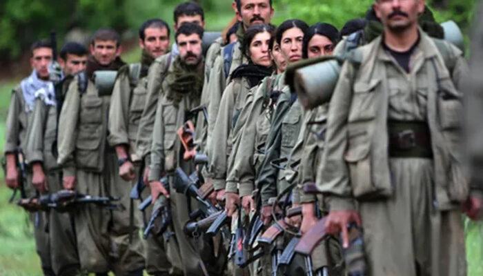 Teslim olan PKK'lı teröristten korkunç korona itirafı: Hastalara intihar eylemi dayatılıyor
