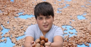 Kahramanmaraş'tan 10 bin ton tescilli ceviz ihracatı