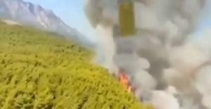 Antalya'da orman yangını kontrol altına alındı