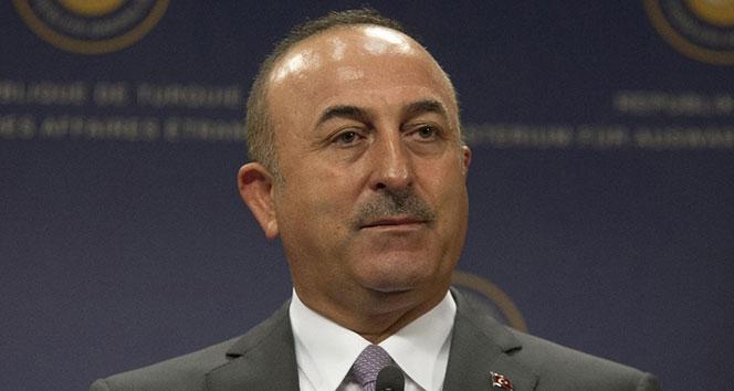 Bakan Çavuşoğlu: Büyükelçinin...