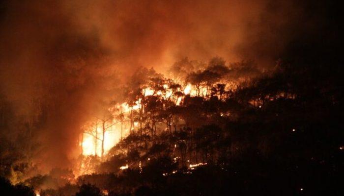Balıkesir'de orman yangını! (Ayvalık'taki orman yangınında son durum)