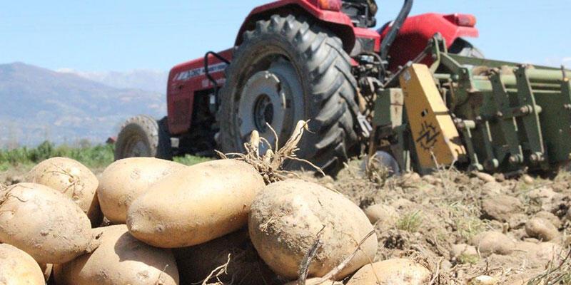 Cumhurbaşkanı Erdoğan'dan çiftçiye müjde