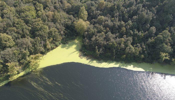 Elmalı Barajı'nın rengi yeşile döndü! Vatandaşlar tedirgin