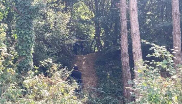 İstanbul Arnavutköy'de ormanlık alanda kadın cesedi bulundu