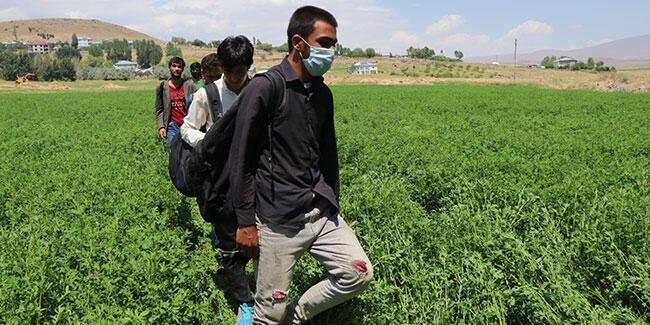 Van'da 25 kaçak göçmen yakalandı, 6 organizatör tutuklandı