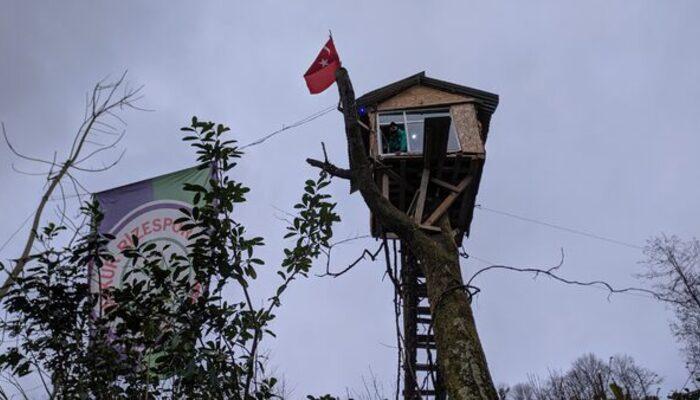 Yer: Rize! Koronavirüse karşı ağaç ev önlemi
